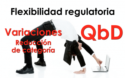 Flexibilidad regulatoria y reducción de categoría en el tipo de variaciones