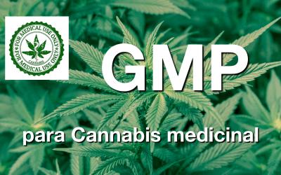 Requisitos GMP para Cannabis