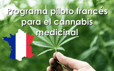 Programa piloto francés para el cannabis medicinal
