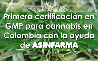 ASINFARMA ayuda a CLEVER LEAVES a obtener la certificación para producir medicamentos a base de cannabis