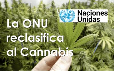 Reclasificación del Cannabis